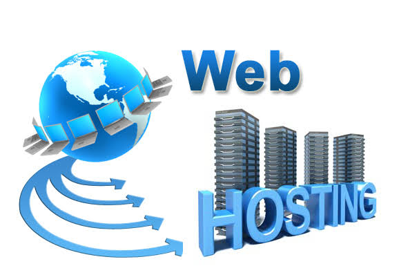 What to Look For In A Web Hosting Provider?